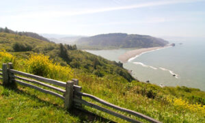 North Coast Environmental Law Office Bayside California