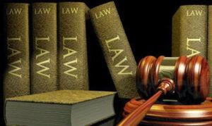 Bagel Law Firm